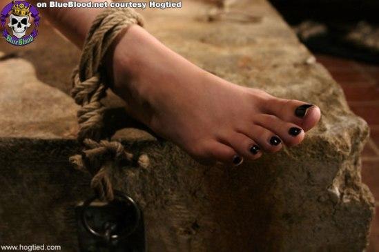Sasha-Grey-Feet-194859